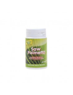 SAW PALMETTO NATURAL POINT...